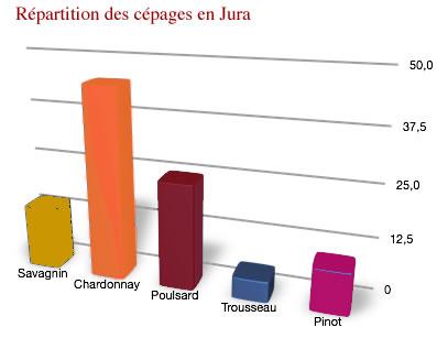 répartition des cépages des vins du Jura