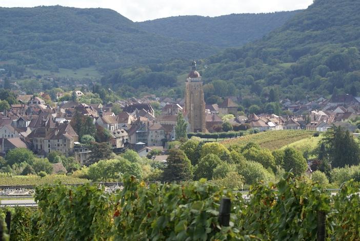 Les vignes autour d'Arbois