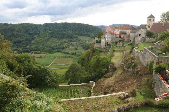 Les vignes autour de Château-Chalon