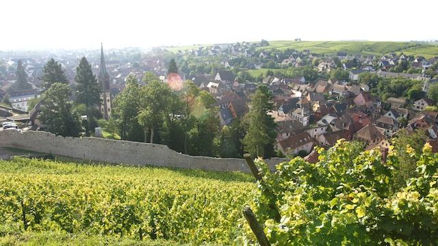 Le village de Ribeauvillé