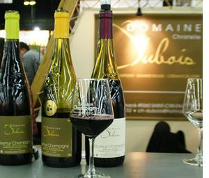S lection de vignerons salon des vins de loire 2013 for Salon vin paris