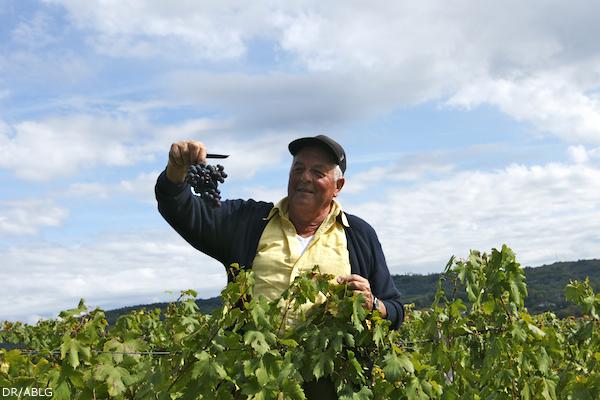 Jacques Tissot, vigneron d'Arbois