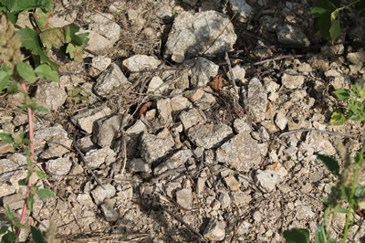 granit-hermitage