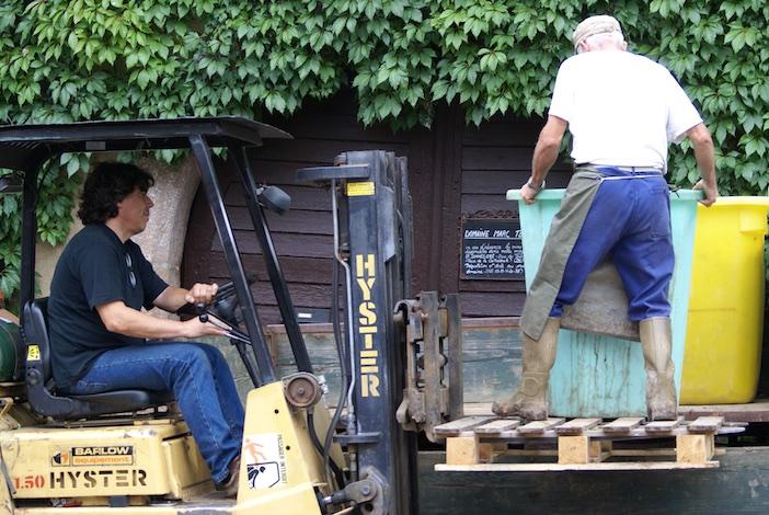 Dans son village de Zellenberg, Marc Tempé rentre ses raisins pour les presser