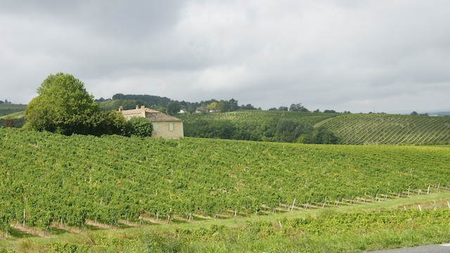 vin de bergerac