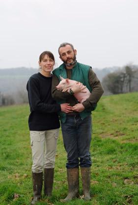 cochon_breton