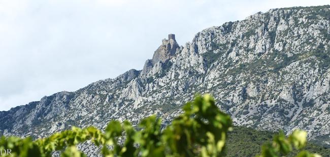La forteresse cathare de Quéribus domine le val d'Agly, terroir des vins de Maury