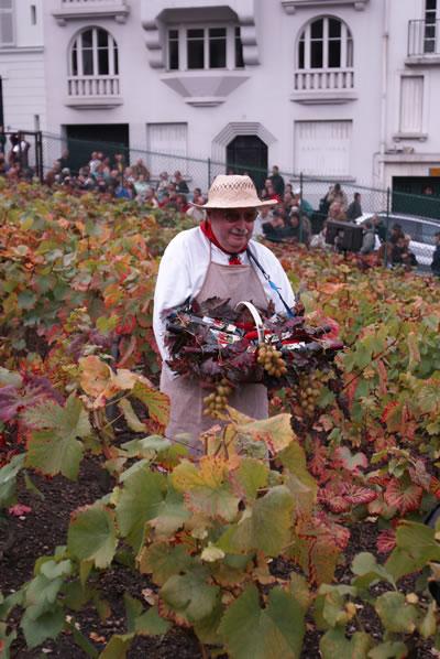 vigneron_monmartre