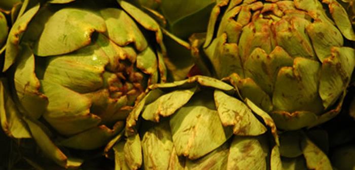 artichaut-bretagne