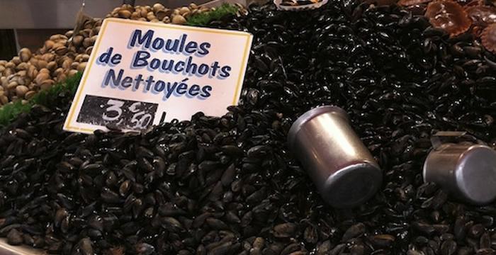 moules-bouchot