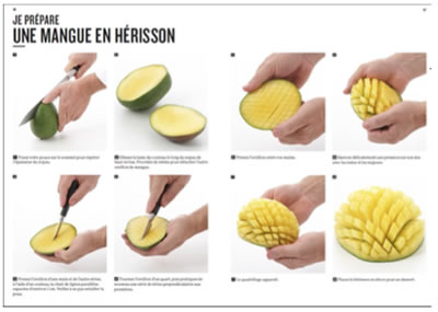 mangue_herisson