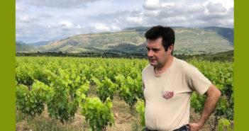 Jerôme Bertrand-Bergé, vigneron à Paziols